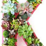 A planter becomes a statement art piece